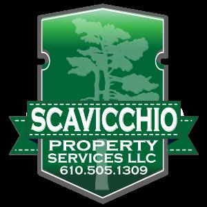 scavich